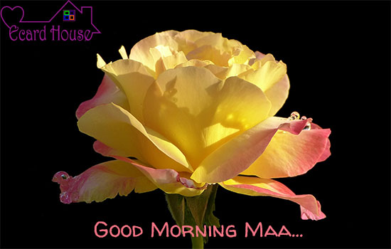 Good Morning Maa