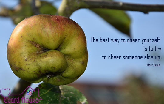 Cheer others