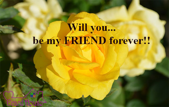 Will You Be My Friend For Ever !